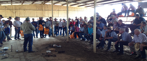 Predator Control Field Day - Longreach (Source: DAFF, Qld)